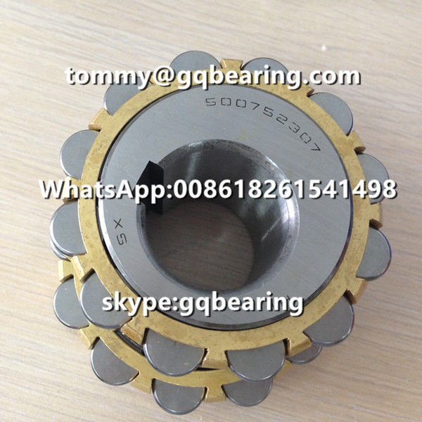 500752307 Eccentric Bearing 500752307K Brass Cage Cylindrical Roller Bearing for Reducer